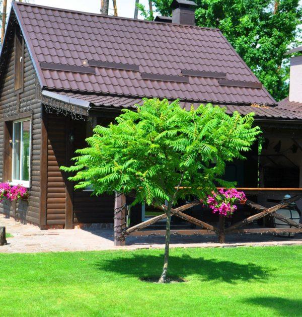 Дом с мангалом